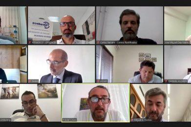 Videoconferencia con la Alcaldía de Córdoba y la Delegación de Movilidad sobre el proyecto de ciudad en materia de movilidad.